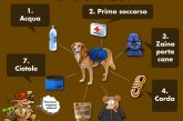 Scuola di combat: doggie bug out bag