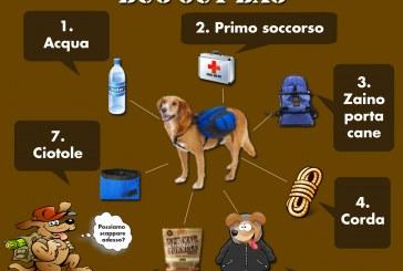 Scuola di combat: doggie bug out bag