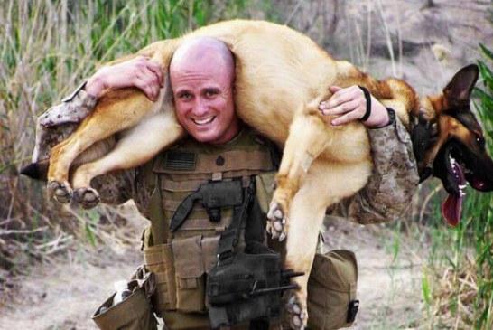 Cane in pericolo salvato dal Combat Softair di Brindisi